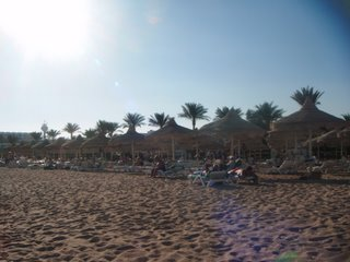 The beach at the Baron Palms Resort